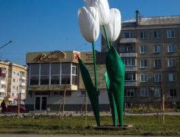 Куда сдать автомобильный аккумулятор и батарейки в Южно-Сахалинске