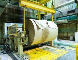 Переработка макулатуры – рентабельное производство или способ спасения планеты