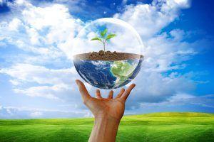 Экологическая ситуация в Сочи