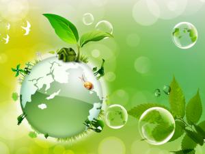 Экология Тюмени