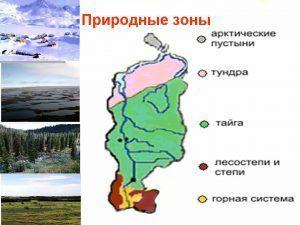Природные зоны Красноярска