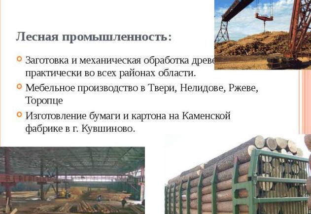 Промышленность в Твери