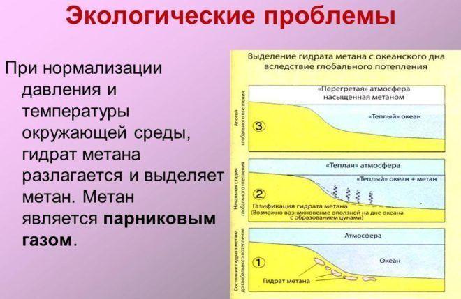 Экологические причины