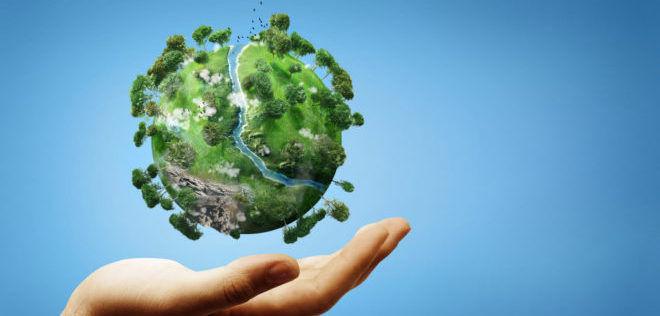 Вред для экологии