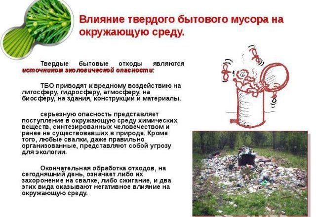 Для чего нужно организовывать вывоз мусора