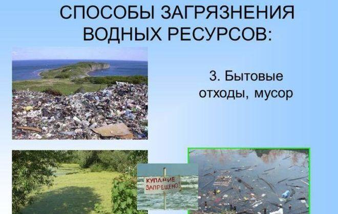 Опасность загрязнения экосистемы бытовыми отходами