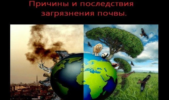 Причины загрязнения окружающей среды
