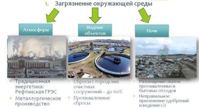 Проблемы экологии города