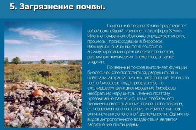 Загрязнения экосистемы мусором