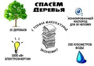 Деревья наши зеленые друзья поэтому сдавайте макулатуру, что бы спасти их