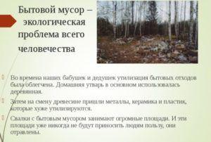 Бытовой мусор – экологическая проблема всего человечества