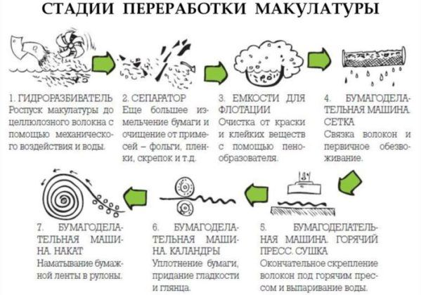 Этапы переработки макулатуры